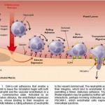 Leucocyte Adhesion Deficiency in Harrison 17th and 18th Editions : Operation Harri Capsule